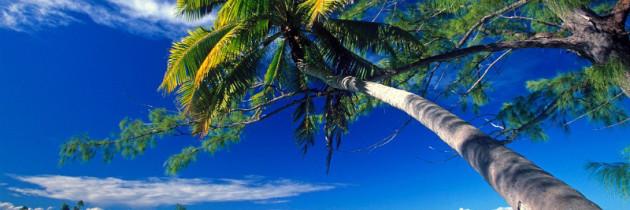9 Ilhas Compradas por Celebridades e Milionários que Você Conhece