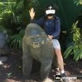 estatua-de-macaco-busch-gardens