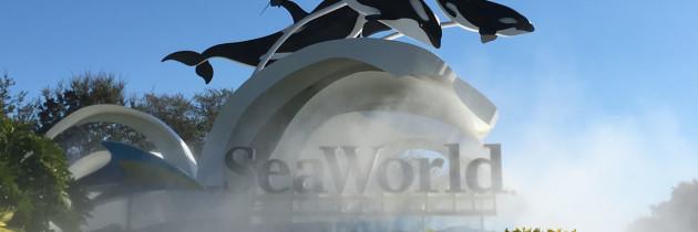 Como É o SeaWorld Orlando – Vale a Pena Conhecer?
